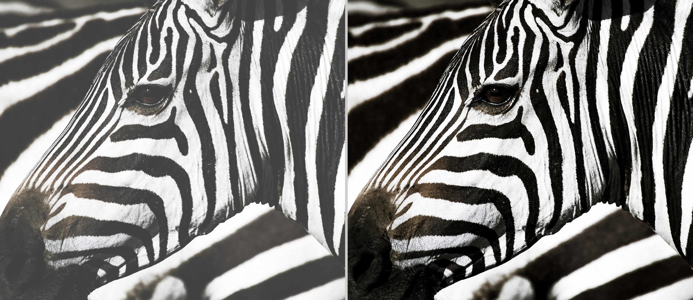 Superior contrast
