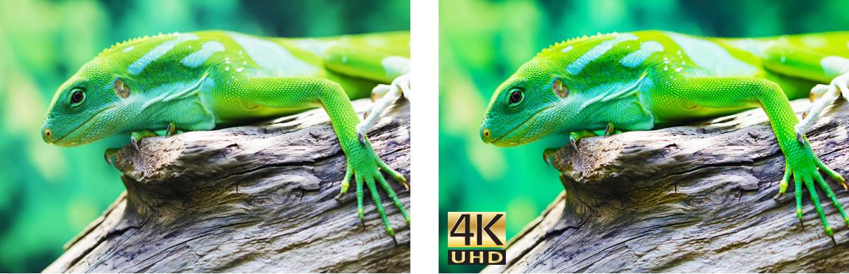 Optoma UHD60 4K Ultra HD Projector - 4kuhdlizzard split