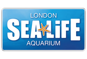SEA LIFE makes Thames Tideway Gallery accessible and fun